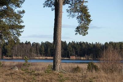 spillersboda_2020-03-10_154815