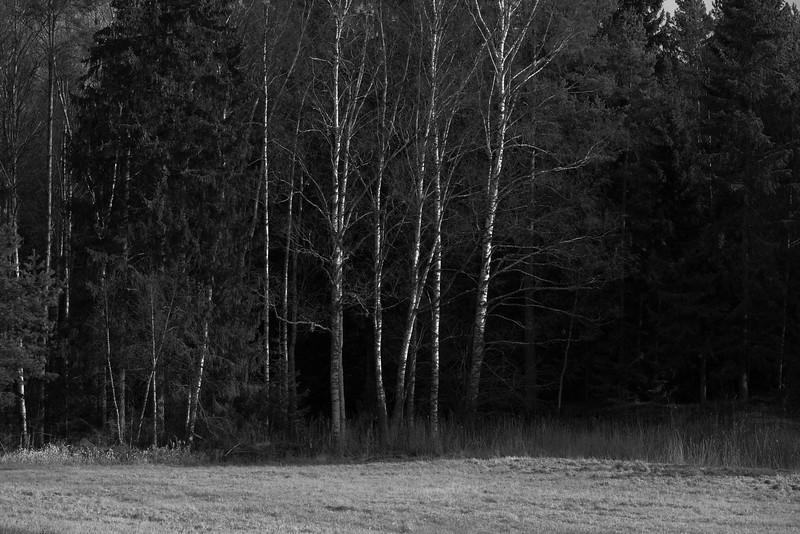 spillersboda_2020-03-09_113110