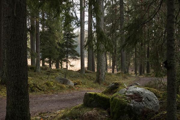 spillersboda_2020-03-10_151515