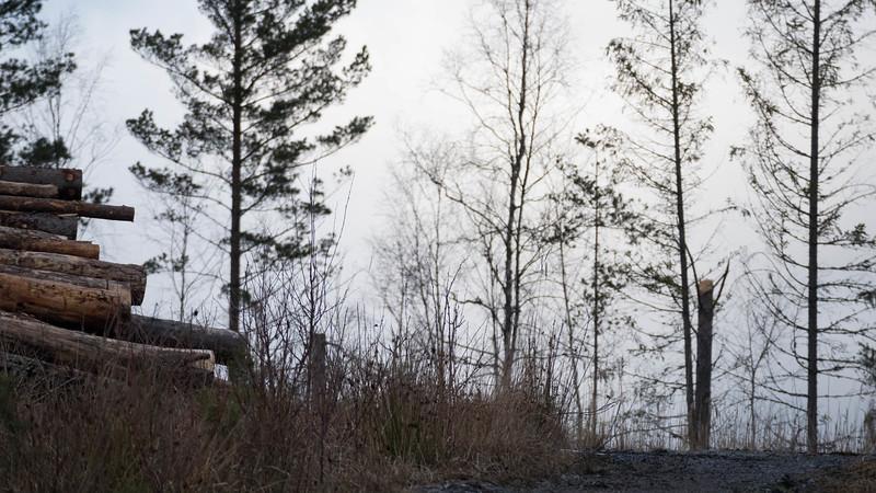 spillersboda_2020-03-11_162924