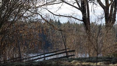 spillersboda_2020-03-13_093201