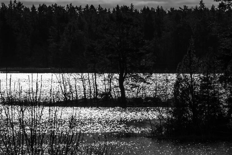 spillersboda_2020-03-13_102018