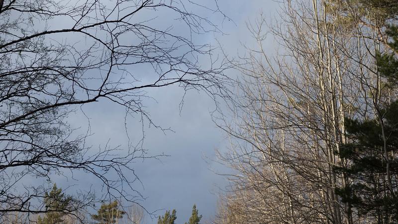 spillersboda_2020-03-11_160737