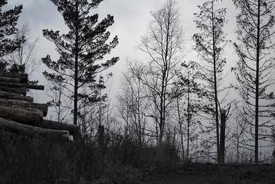 spillersboda_2020-03-11_162925