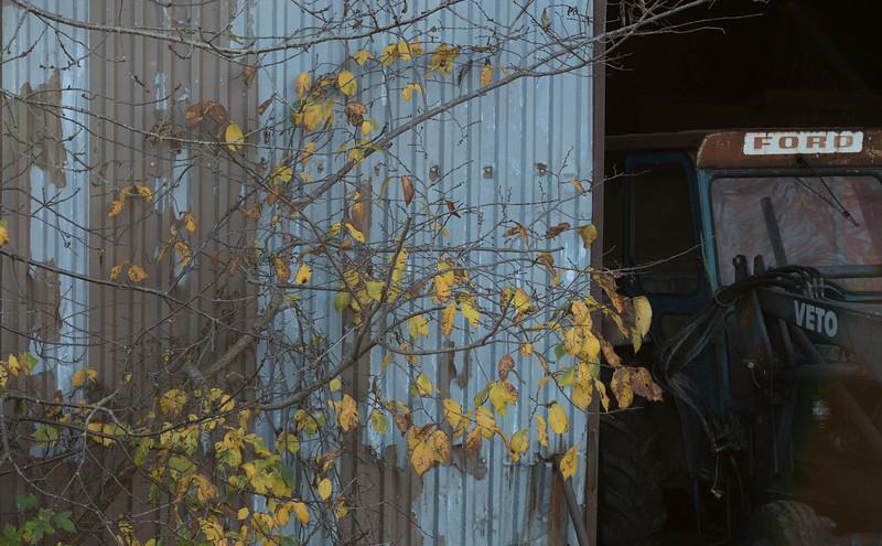 möborg_2020-11-08_151102