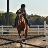 VL 101220 Equine Jump