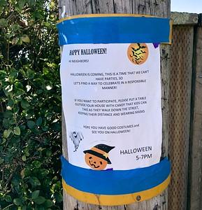 Halloween 10 29 20 Berkeley CA Nancy Rubin