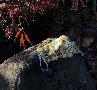 Found Mask 9 30 30 Berkeley CA Nancy Rubin