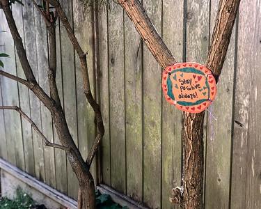Positive sign  Berkeley Path  by Nancy Rubin