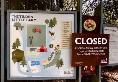 CLOSED Tilden  Berkeley CA 11 4 20 Nancy Rubin