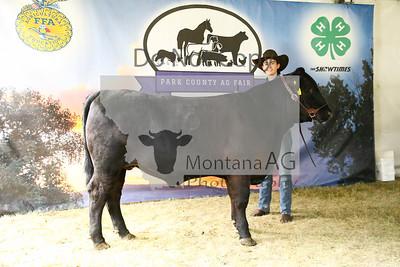 montana ag-19