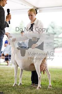 montana ag-9