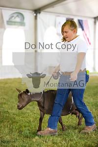 montana ag-20