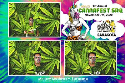 2020.11.07 - Cannafest SRQ - Sarasota Fairgrounds, Sarasota, FL