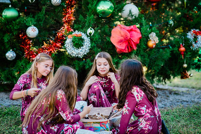 2020.12.12 - Tamara's Holiday Session, West Blalock Park, Venice, FL