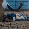 Rodeo Rexburg July 2020-7