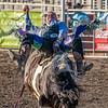 Rodeo Rexburg July 2020-2