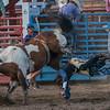 Rodeo Rexburg July 2020-6