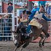 Rodeo Rexburg July 2020-5