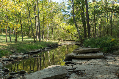 Creekbed-10