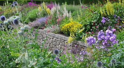 Castle Drogo gardens flowers