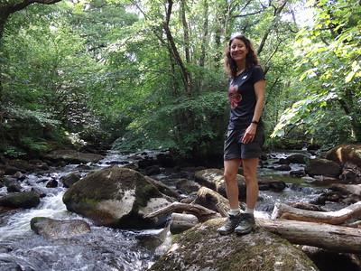 Teign Gorge