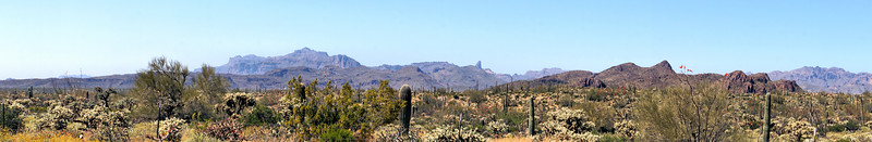 Near the Apache Trail