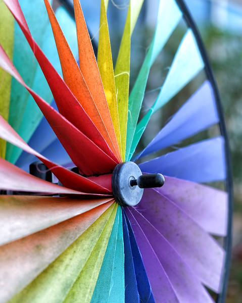 January 15 - Pinwheel for Autism