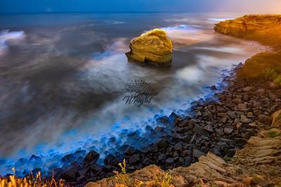 Bioluminescence Sunset Cliffs