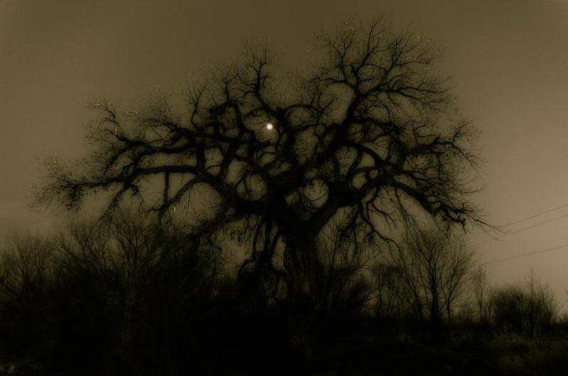Final Moon Rise