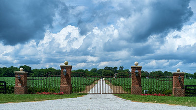 On the Virginia Capital Trail - Carlton Farms