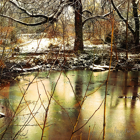 Icy Reflections