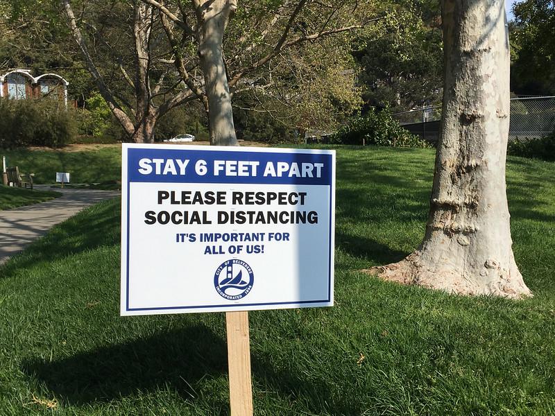 Saturday, here in the park... Belvedere, CA
