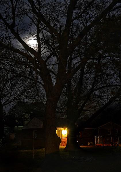 January 9  - The Moon Peeking Through