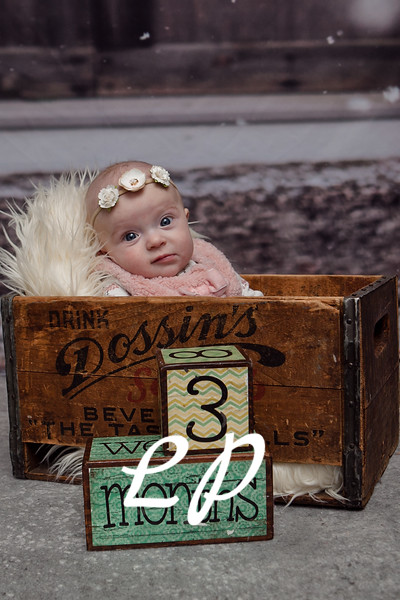 Levis 3 Month (13 of 18)
