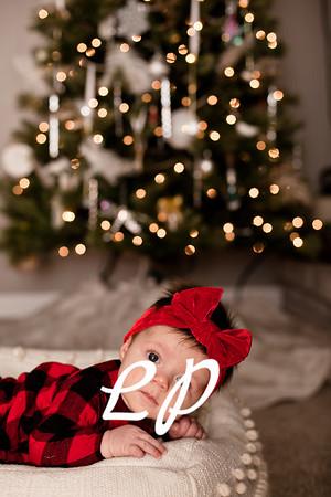 Vair Christmas 2019 (9)