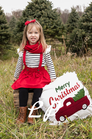 Foor Christmas (2)