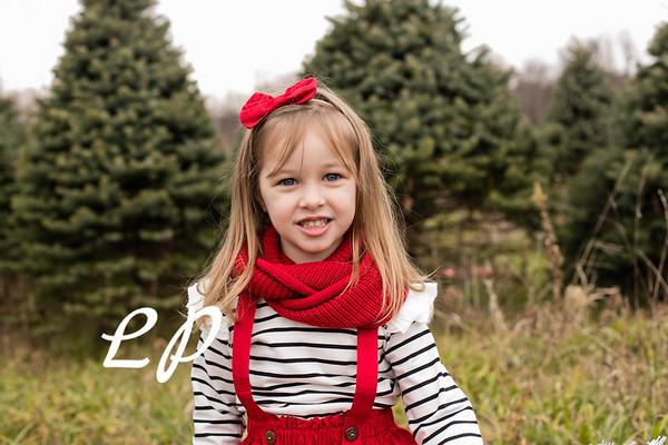 Foor Christmas (6)