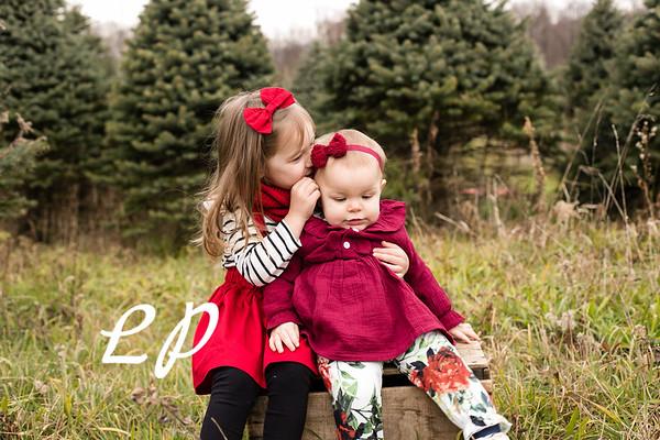Foor Christmas (8)