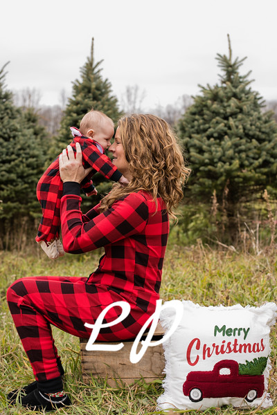 Labbee Christmas (5)