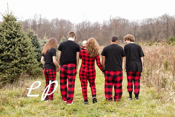 Labbee Christmas (14)