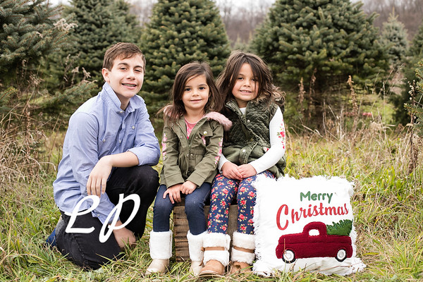 Lewis Christmas 2020 (6)