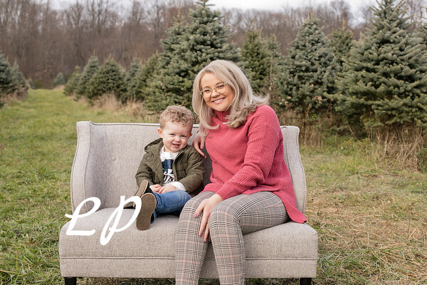 Meadows Christmas 2020 (10)