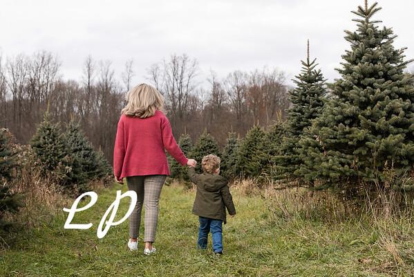 Meadows Christmas 2020 (14)