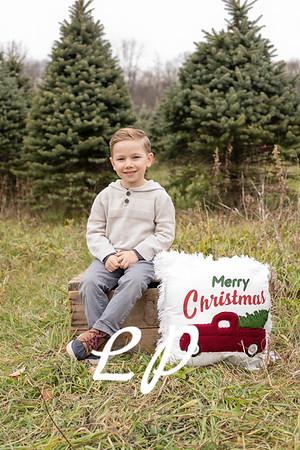 Ringeis Christmas 2020 (3)