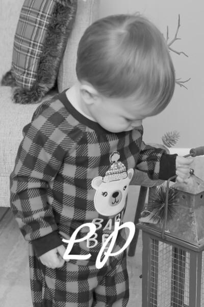 Larrabee Christmas 2019 (6 of 27)