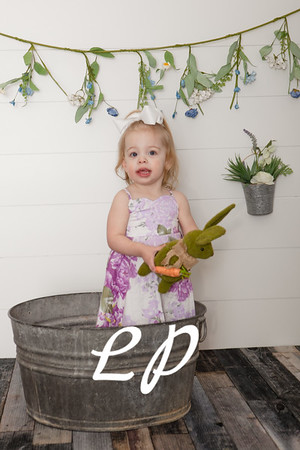 Pellman Spring and 2 Year (22)