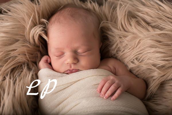 Austin Newborn (2)