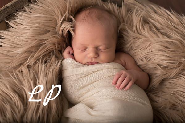 Austin Newborn (5)