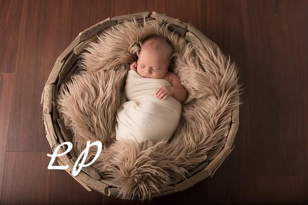 Austin Newborn (6)